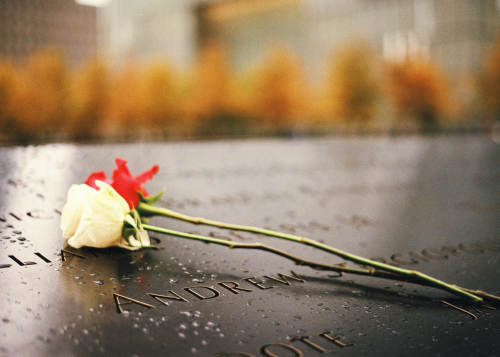 flower-in-9-11-memorial
