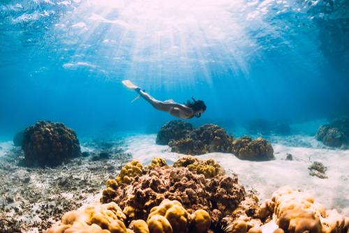 woman-free-diving-in-ocean