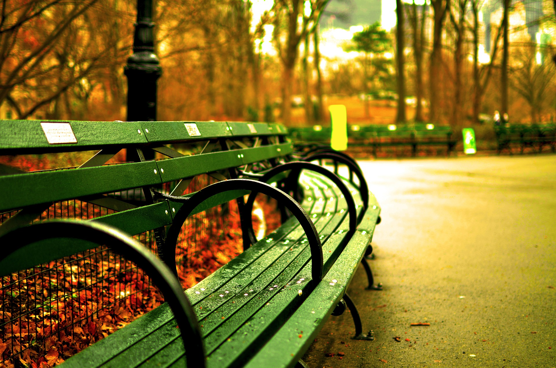 Central park, new york city, benches