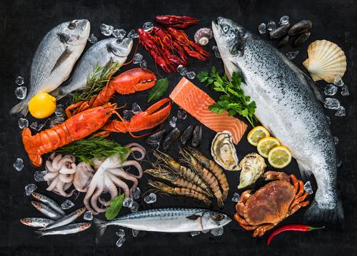 fish-seafood-arrangement