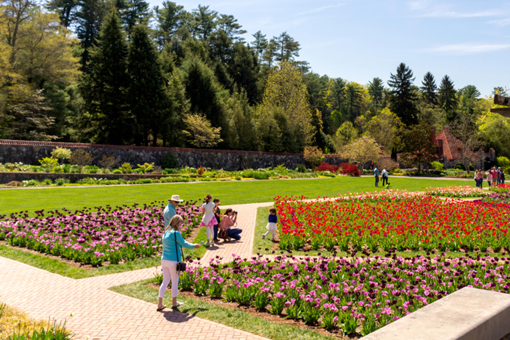 biltmore-estate-garden