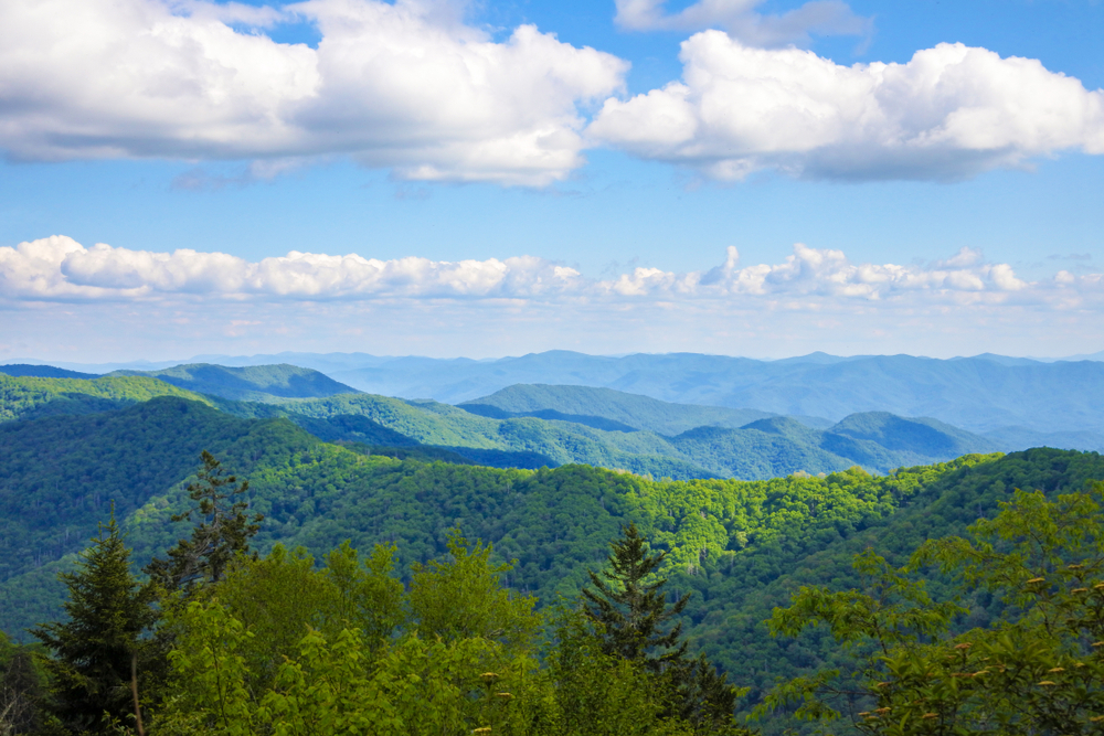 Check out These Eventful Things to Do in Sevierville, Tennessee