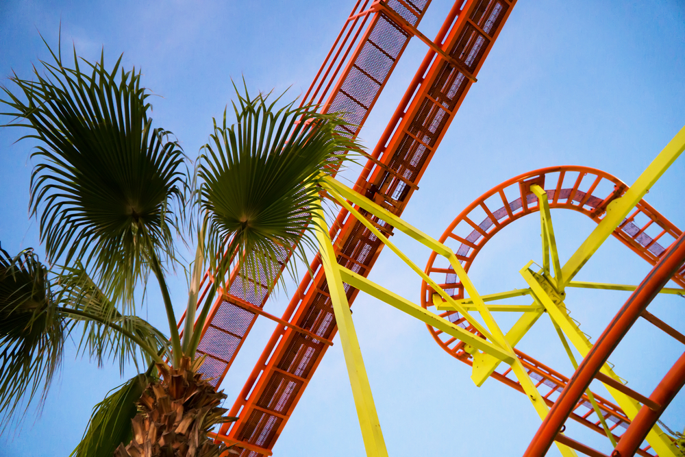 palm-trees-and-rollercoaster